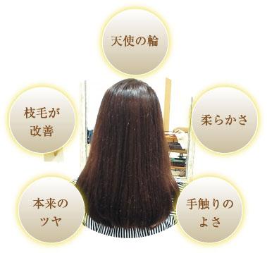 髪再生01